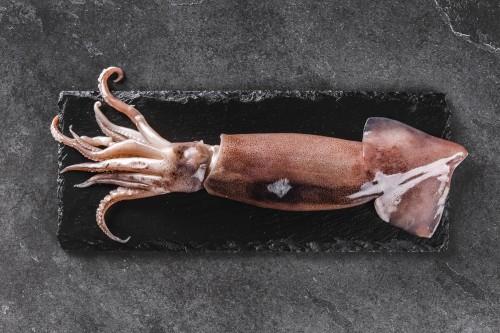 Argentininis trumpapelekis kalmaras, 200-400 gr, 1 kg, šaldyta