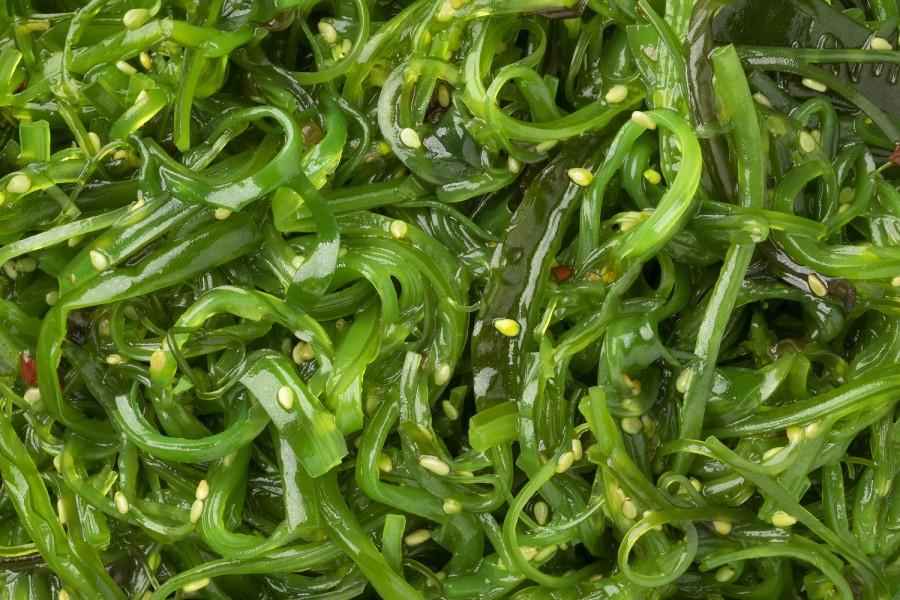 """Jūros dumblių salotos su sezamų sėklomis """"WAKAME"""", 1 kg"""
