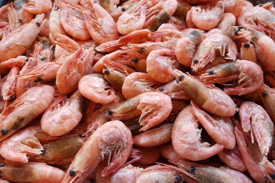 Šiaurinės dryžakojės krevetės, 80/100, virtos, 5 kg, šaldytos
