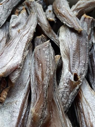Argentininė jūrinė lydeka, vytinta, 5 kg, šaldyta